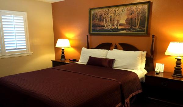 Holland Inn & Suites - Standard King