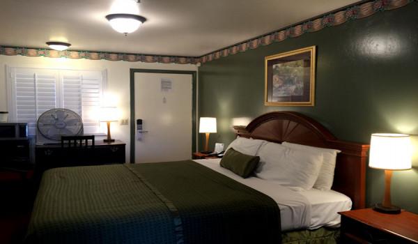 Holland Inn & Suites - Standard Queen